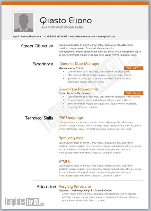 example of cv for job application